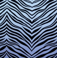 Animal Print Zebra Spandex Covers APUS-370