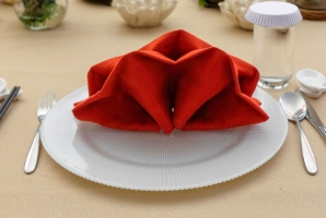 Table Covers Napkins Spun Poly Red Min
